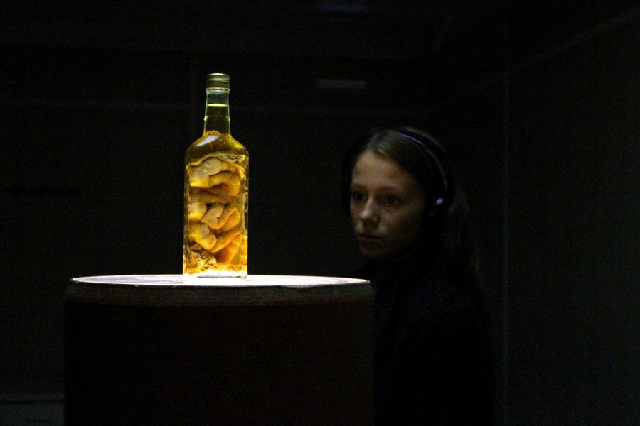HFG Karlsruhe - NATURKUNDEMUSEUM KARLSRUHE: